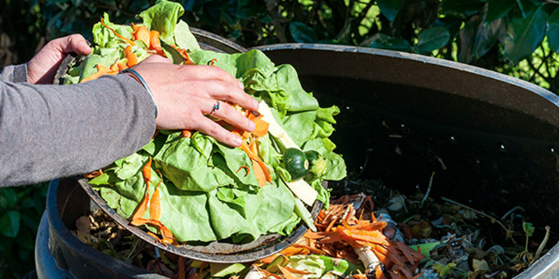 Canned Food News: Surprisingly Easy And Cheap Ways To Eliminate Food Waste
