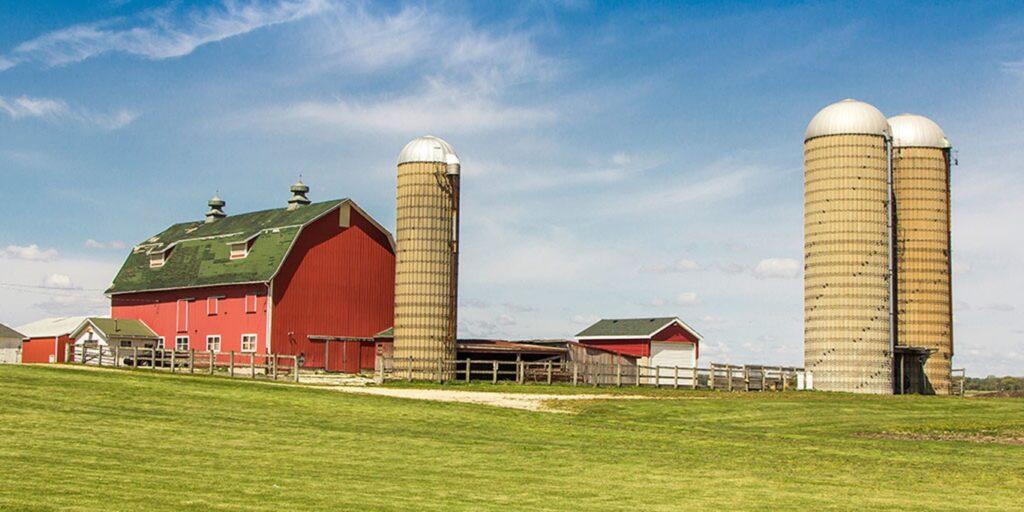 Wysocki Produce Farms